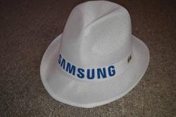 Samsung Stupidedia