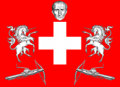 Switzerland flag new.PNG